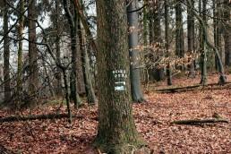 Hexenpfad im Teutoburger Wald
