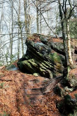 Rolandgrab Teutoburger Wald Tecklenburg