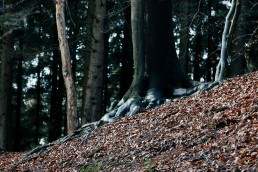Teutoburger Wald Nadja Jacke Photography