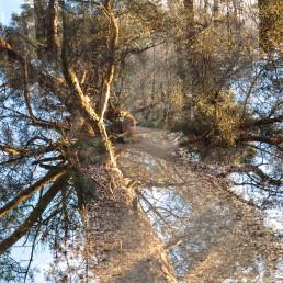 Teutoburger Wald Hermannsweg