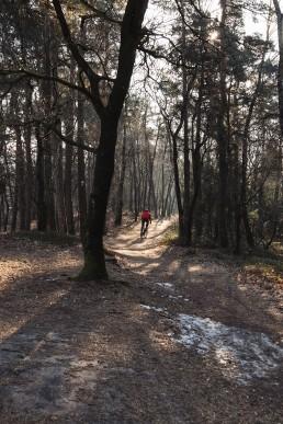 Radfahren im Teutoburger Wald