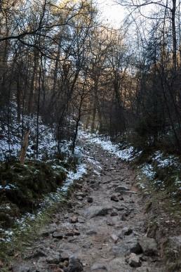 Teutoburger Wald Dörenther Klippen Steinweg