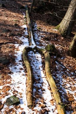 Teutoburger Wald Stimmgabel