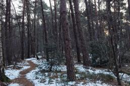 hermannsweg - Teutoburger Wald - Hörstel