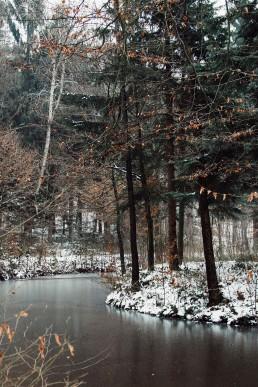 Teutoburger Wald im Winter