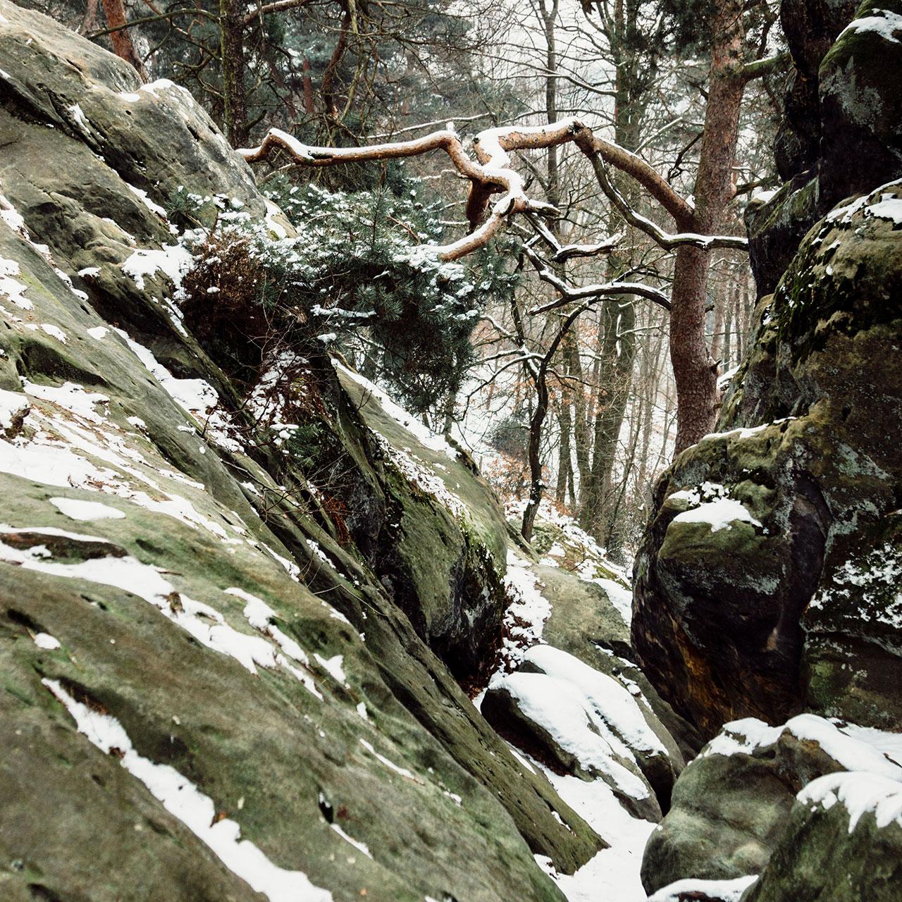 Dörenther Klippen im Winter